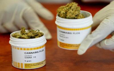 Prohibición o legalización: La disputa por el uso médico y el consumo recreacional del cannabis en México
