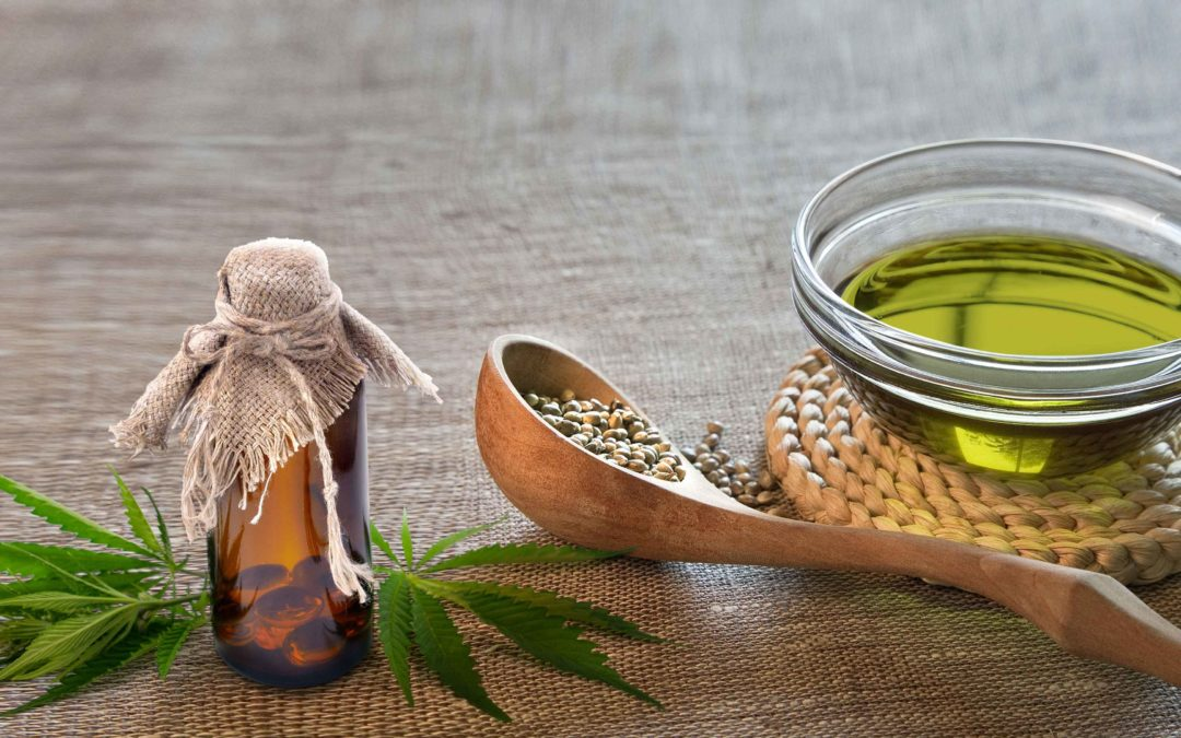 La prohibición de las plantas psicoactivas desde la perspectiva de salud pública