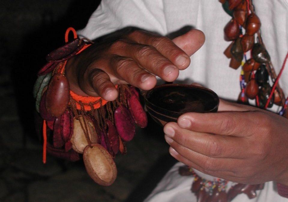 Consumo Ritual de Enteógenos e Imaginarios de Sanación en Medellín, Colombia