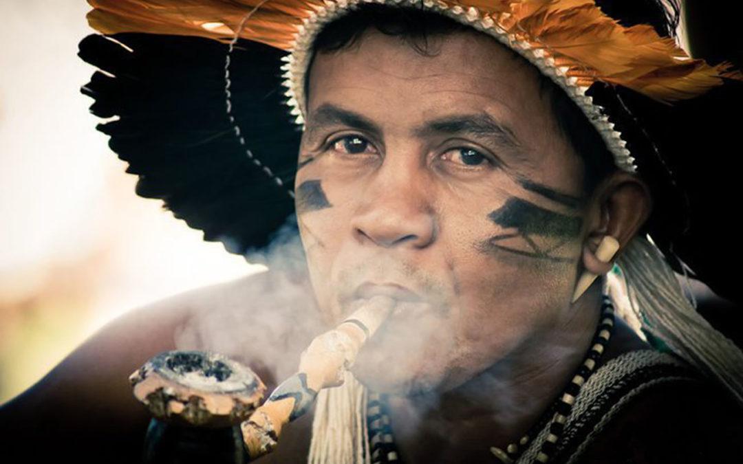¿Plantas sagradas? El concepto de sagrado en la tradición de los pueblos indígenas