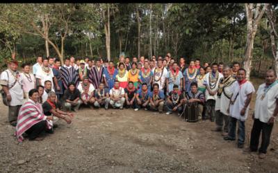 Chamanismo y Violencia: La Práctica de la Curación con Yagé como Articulador Político y Social entre Comunidades Indígenas en Colombia