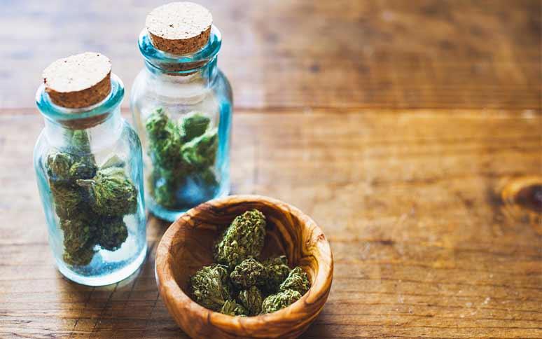 Desafíos para la Educación Popular en Cannabis Medicinal en Latinoamérica