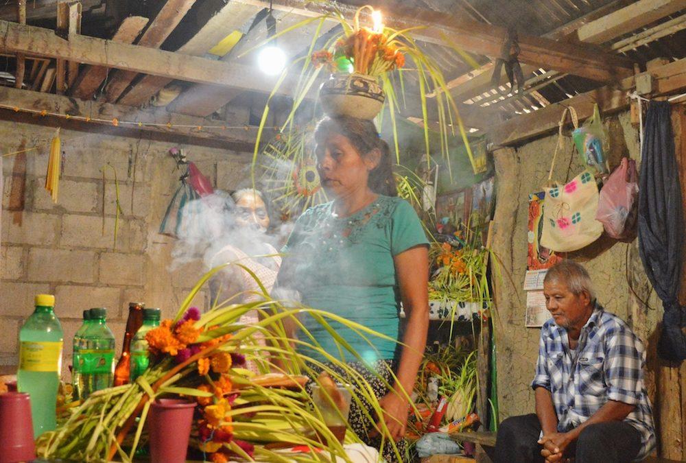 Uso Ritual de Hongos Sagrados entre los Mazatecos de Oaxaca y de la Santa Rosa entre los Ñuhú de Veracruz