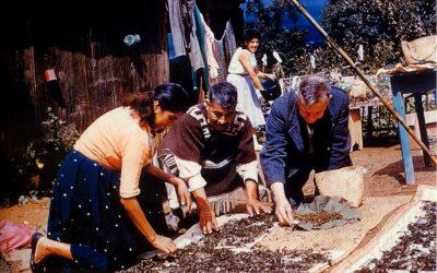 Ndi-xí-tjo: Economía Política de los Alucinógenos en la Sierra Mazateca